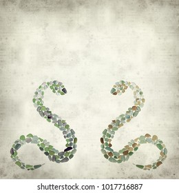 textured old paper background with sea glass snake