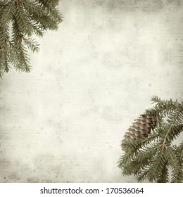 textured old paper background with spruce branch with cone