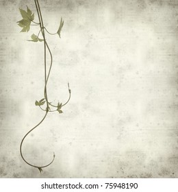 textured old paper background with young shoots of hops