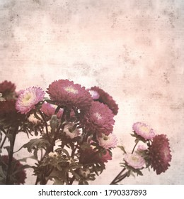 textured stylish old paper background, square, with Chinese aster bouquet