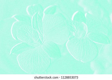 Textures of embossed flowers with colorful background
