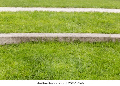 textures and lines, grass, concrete curb and path