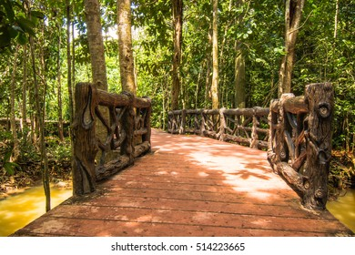 Tha Pom Klong Song Nam Mangrove forest conservation and tourist destination in Krabi province, Thailand.