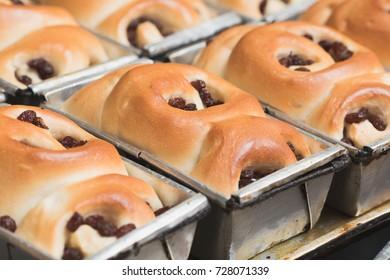 Thai bakery closeup bakery baked Raisin bread background