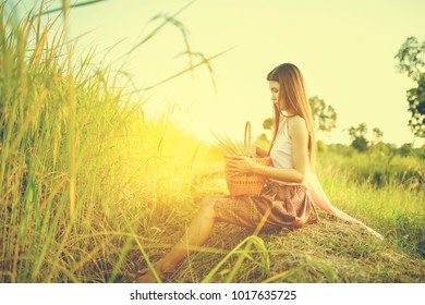 Thai beautiful girl in Esan traditional dress sitting near wicker basket on rice field, countryside, Thailand. This is lifestyle people in countryside Thailand culture.