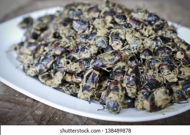 Thai cuisine. Edible beetles in a spicy sauce.