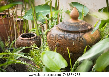 Thai Design Clay Pottery In Garden