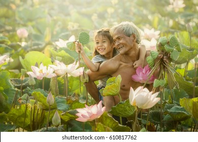 Thai Farmer and Children grow Lotus in the season. Lotus were soaked with water and mud to be prepared for harvest
