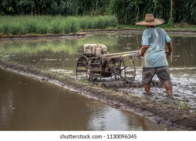 Thai farmer driving tiller tractor to plow paddy field before rice culture, Chiang Mai landscape, Thailand, Asia