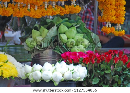 Thai Flower Shop That Selling Lotus Stock Photo Edit Now