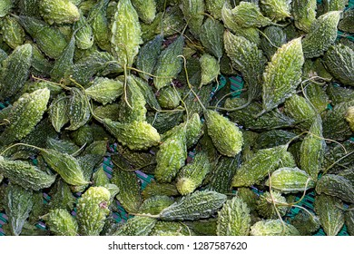Thai Green Vegetable Called a Karela or Karila, Goya on a Thai Market