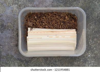 thai local tobacco cigarette