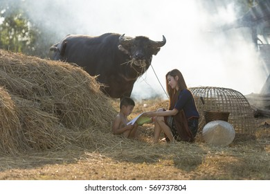 Thai local woman teaching her brother to read the book beside a pile of straw and have buffalo on background in countryside Thailand