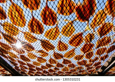 Thai salted fish hanging up to dry on the beach with blue sky background / Food preservation, salted fish is fish cured with dry salt and thus preserved for later eating