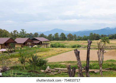 Thai traditional house in countryside