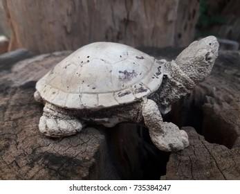 Thai Turtle Statue