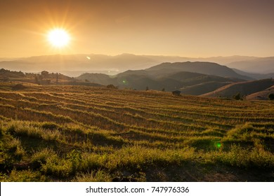Thai village surrounded by forests and plowed fields at sunset. Agriculture in Thailand, arable land and pastures.