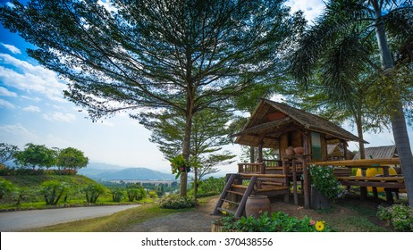 Thai wooden house under big tree with blue sky