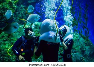 Thailand, Bangkok - August 30, 2018: Tourist enjoying ocean walker underwater  Sea Life Bangkok Ocean World Aquarium in the shopping center of Siam Paragon