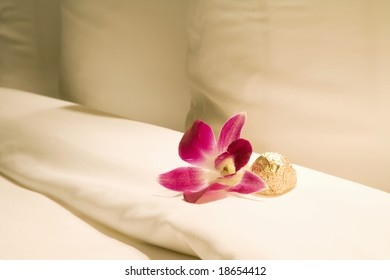Thailand. Bangkok. Orchid and chocolate in Hotel room.