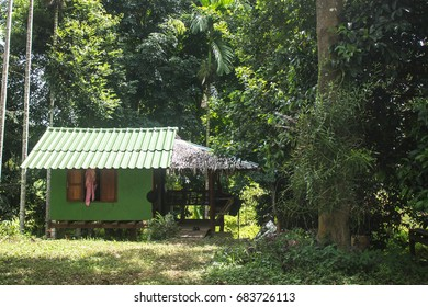 Thailand cottage in plantation of gardener. Is for reside of them.