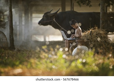 Thailand country boy sitting on a pile of straw, and playing computer notebook on farm background