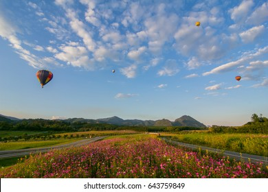 Thailand International Balloon Festival, Chiang Rai