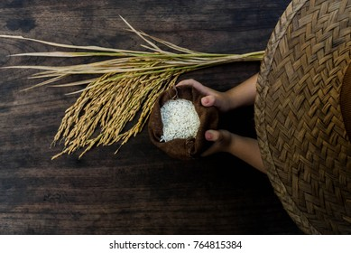 Thailand Rice on wooden table, rice in sackcloth and paddy on black wood,white rice in burlap sack with rice grain on the black wood.