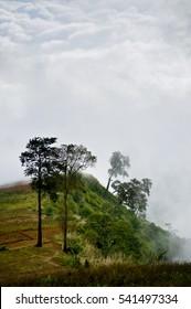 Thailand top hill 3