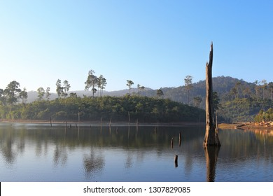 Thakhek loop 2 - Thonglor area with dead trees above lake and foggy sunshine morning, Laos