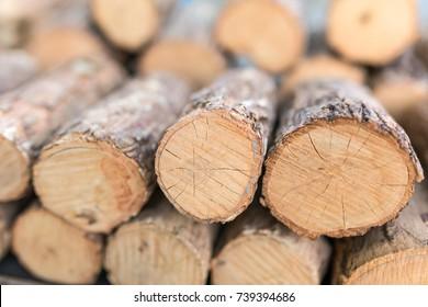 Thanaka wood close-up. Tanaka is Burmese tradition cosmetic made from bark of tanaka tree.