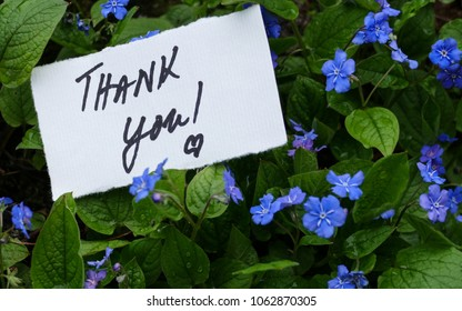 thank you flower note background