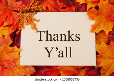 Thank You Greeting Card, Some fall leaves and a greeting card with text Thanks Y'all