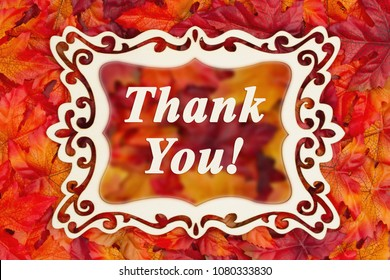 Thank You message with a fancy wood frame and fall leaves