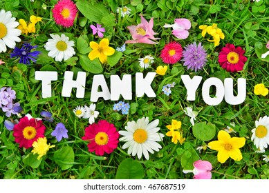 thank you text on flower meadow