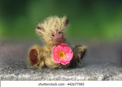 Thank you very much, small, shy teddy bear with rose flower, a gentleman of the old school