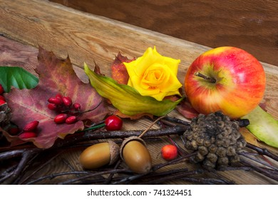 Thanksgiving background with apple, barberry, maple leaves, acorns and yellow rose on the wooden table