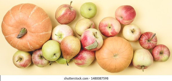 Thanksgiving Background Apples Pumpkins on Yellow Background Long Halloween Thanksgiving day or Seasonal Fall Background Top View