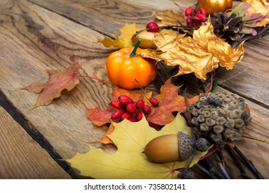 Thanksgiving background with pumpkin, acorn, barberry, cones and golden maple leaves holiday wreath on the wooden table, copy space