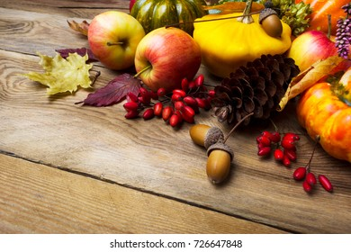 Thanksgiving background with pumpkins, fir cone, barberry, apples, acorn and maple leaves, copy space
