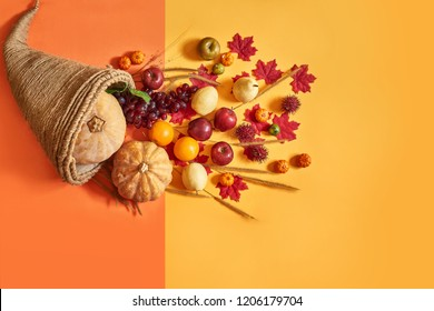 Thanksgiving cornucopia fill in fruit isolated on orange color background in autumn and fall harvest season