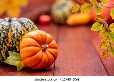 thanksgiving day with pumkin and leaves