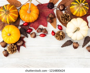 Thanksgiving Day. Vegetables and berries. White and orange pumpkins, cones and nuts, autumn leaves. Gifts of nature. Gif box. Happy Thanksgiving. Be thankful. Gather with family. Harvest.