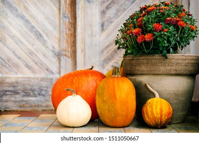 Thanksgiving decorated front door with various size and shape pumpkins and chrysanthemum. Front Porch decorated for the Halloween, Thanksgiving, Autumn season.