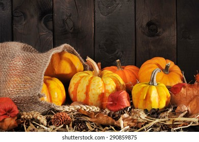 Thanksgiving - different pumpkins in jute bag on straw with copyspace in front of brown background