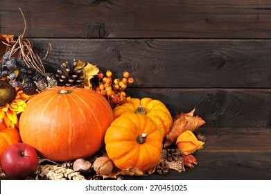 Thanksgiving - different pumpkins with nuts, berries and grain in front of wooden boards
