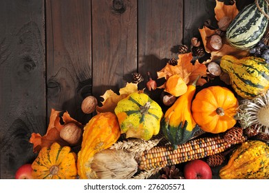 Thanksgiving - different pumpkins with nuts, berries, maize-cob and grain on wooden floor with copyspace