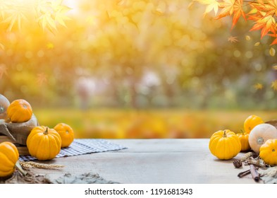 Thanksgiving with fruit and vegetable on wood in autumn and Fall harvest cornucopia season