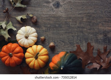 Thanksgiving season still life with colorful small pumpkins, acorn squash and fall leaves over rustic wooden background.