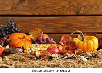 Thanksgiving - vegetable and fruits on straw in front of old weathered wooden boards with copyspace
